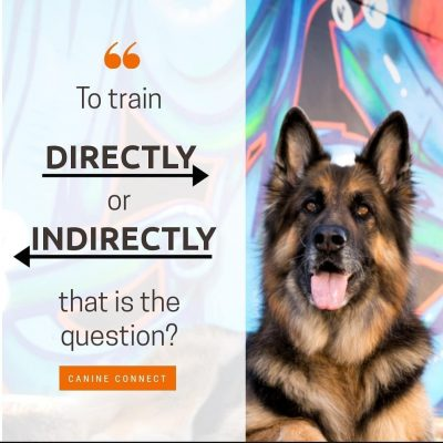 Training directly or indirectly?