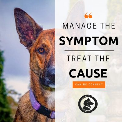 Manage the Symptom. Treat the Cause.
