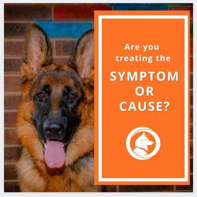 Symptoms or Root Cause?